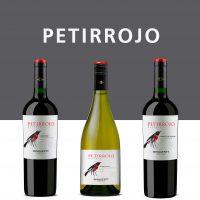 petirrojo_Mesa-de-trabajo-1-200x200